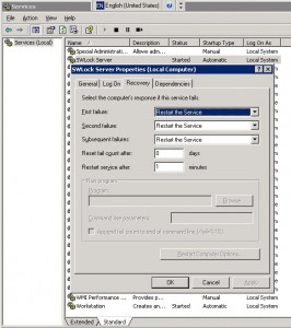 swlock, CSW_NetSWKeyNTService.exe, авторестарт
