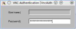 Аутентификация по паролю VNC